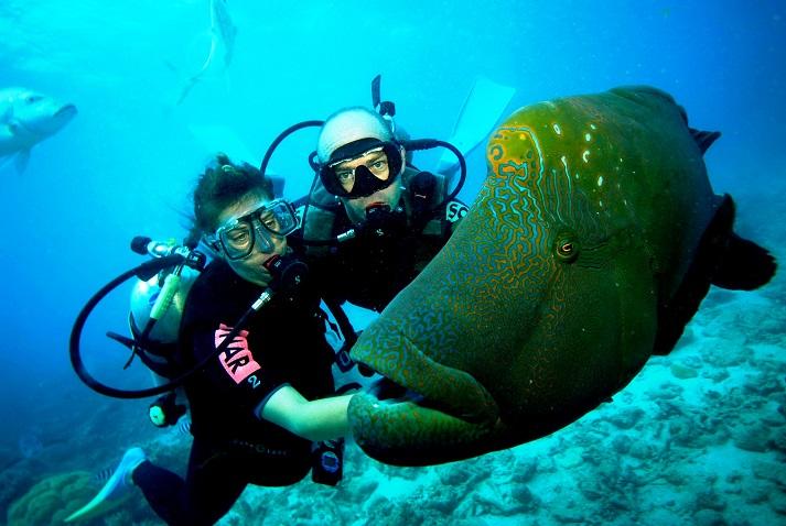 Diving Equipment Australia