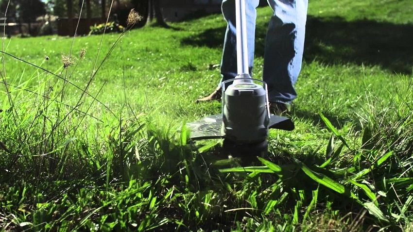 5 Tools To Have On Hand To Maintain Your Lawn S Good Looks