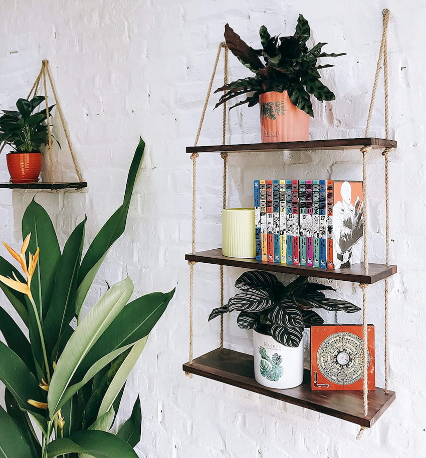 wall shelves with plants and books